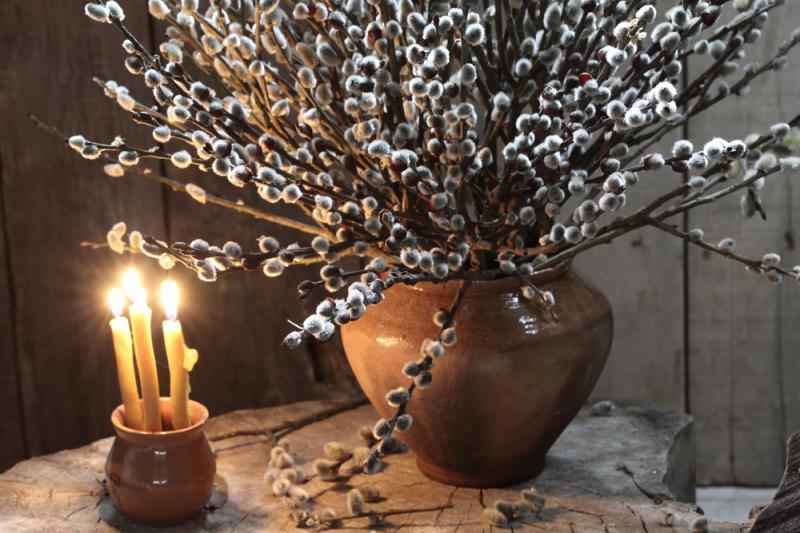 Вербное Воскресенье весной 2019 - история, дата, традиции и приметы на апрель.