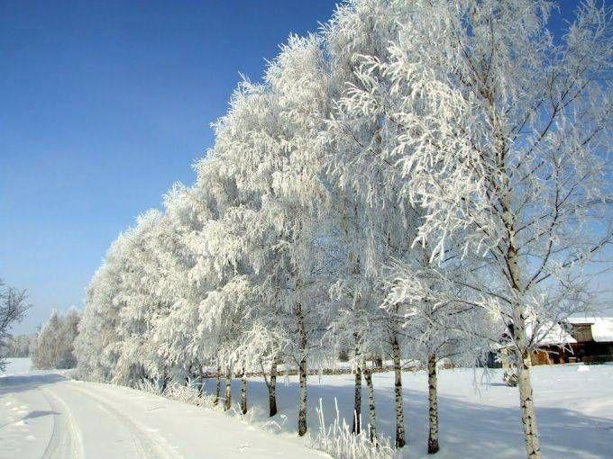Народные приметы на 25 января – Татьянин день, Татьяна Крещенская