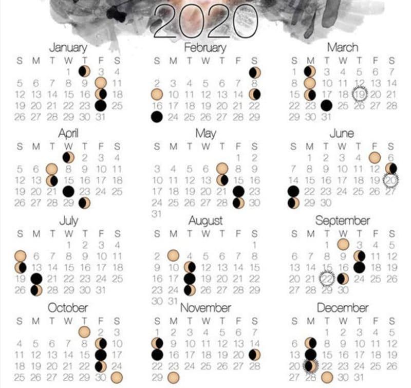Когда сажать перец на рассаду в 2020 году, посадочный календарь