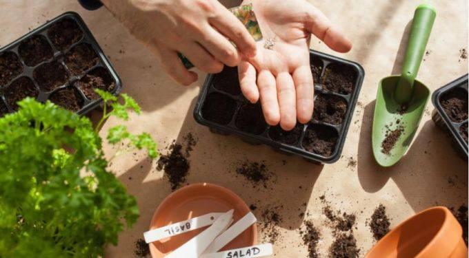 Подробный лунный календарь на март 2020 года садовода и огородника, приметы