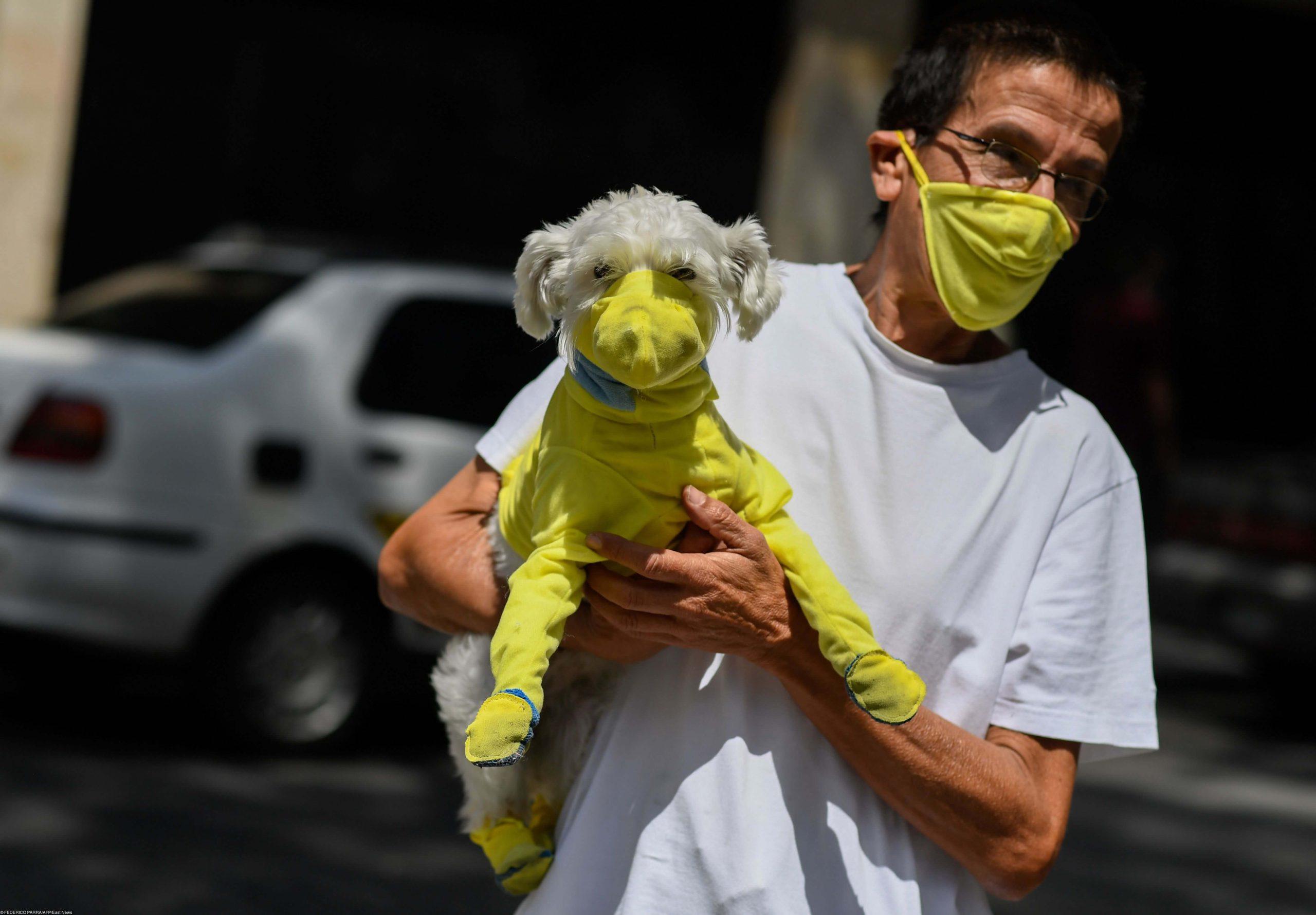 Распространение коронавируса в мире, актуальное на 8 мая 2020 года